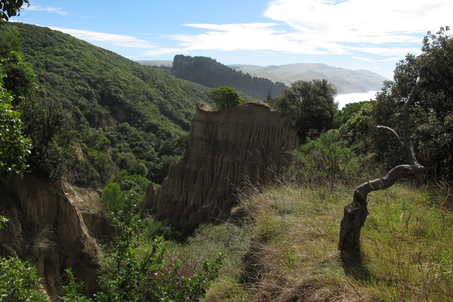 Les Cathedral cliffs de Gore Bay, sur la route vers Kaikoura